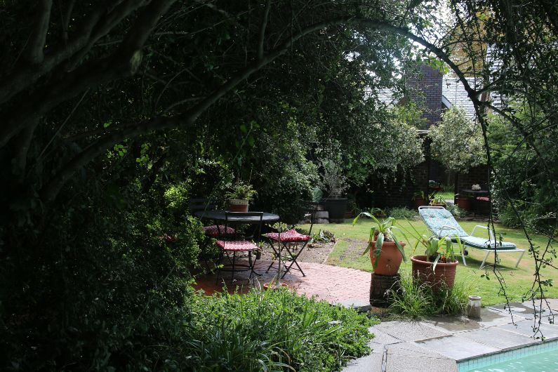 Self-catering indigenous bird friendly garden in Parktown North, Johannesburg | Acorns on 8th